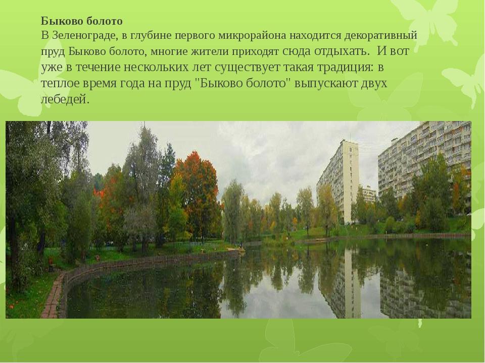 Быково болото В Зеленограде, в глубине первого микрорайона находится декорат...