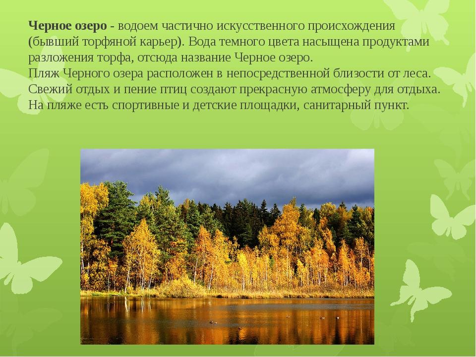 Черное озеро - водоем частично искусственного происхождения (бывший торфяной...