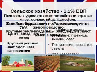 Сельское хозяйство - 1,1% ВВП Полностью удовлетворяет потребности страны: мя
