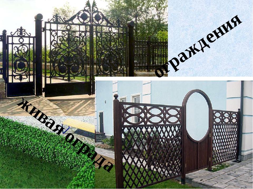 ограждения живая ограда живая ограда