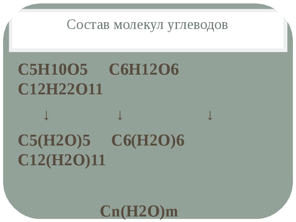 Состав молекул углеводов С5Н10О5 С6Н12О6 С12Н22О11 ↓ ↓ ↓ С5(Н2О)5 С6(Н2О)6 С1...