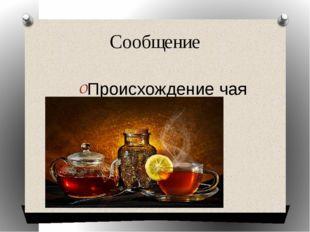 Сообщение Происхождение чая