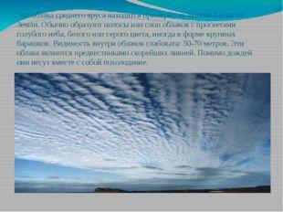 Это облака среднего яруса находятся примерно на высоте 2-6 км от Земли. Обычн