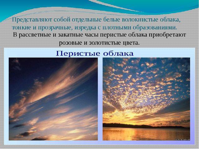 Представляют собой отдельные белые волокнистые облака, тонкие и прозрачные,...
