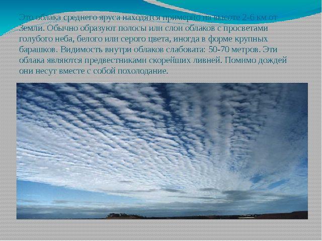 Это облака среднего яруса находятся примерно на высоте 2-6 км от Земли. Обычн...