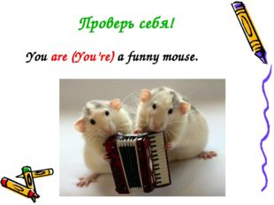 Проверь себя! You are (You're) a funny mouse.