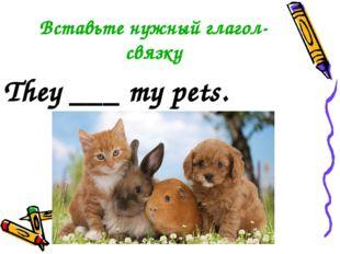 Вставьте нужный глагол-связку They ___ my pets.