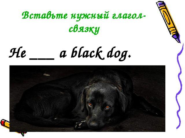 Вставьте нужный глагол-связку He ___ a black dog.