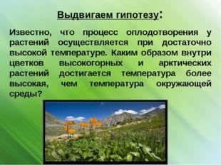 Выдвигаем гипотезу: Известно, что процесс оплодотворения у растений осуществл