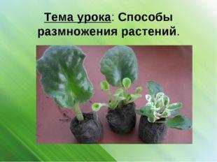 Тема урока: Способы размножения растений.
