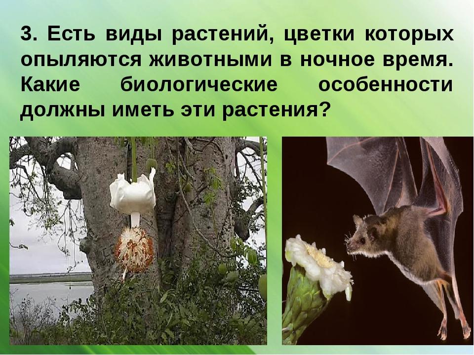 3. Есть виды растений, цветки которых опыляются животными в ночное время. Как...
