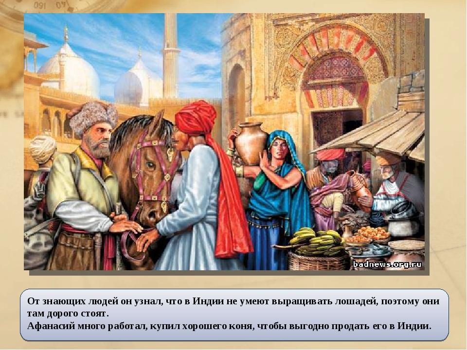 От знающих людей он узнал, что в Индии не умеют выращивать лошадей, поэтому о...