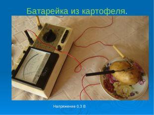 Батарейка из картофеля. Напряжение 0,3 В