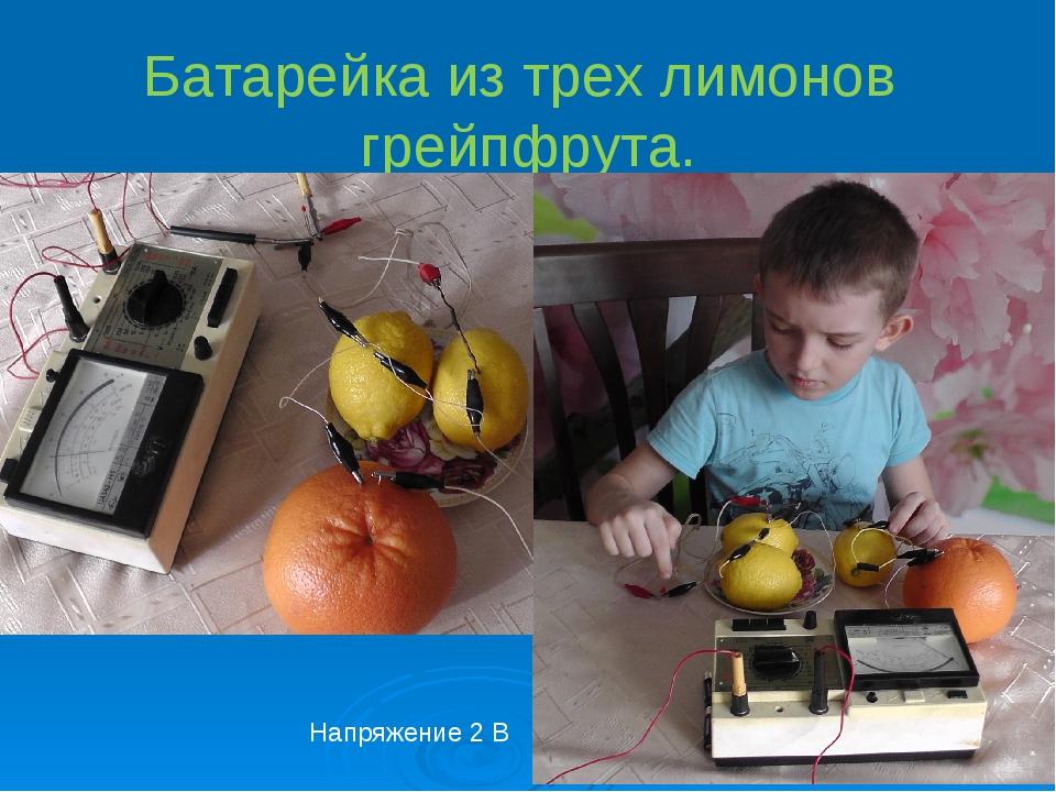 Батарейка из трех лимонов грейпфрута. Напряжение 2 В