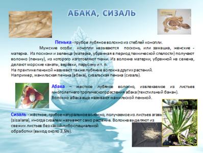 hello_html_m4b8446c2.png