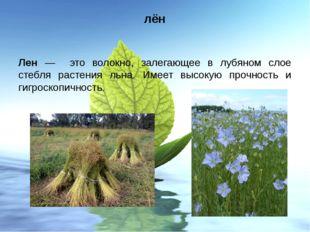 лён Лен — это волокно, залегающее в лубяном слое стебля растения льна. Имеет