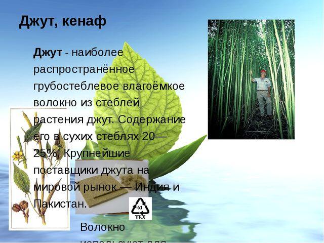 Джут, кенаф Гибискус коноплёвый или кенаф - волокно из стеблей однолетнего лу...