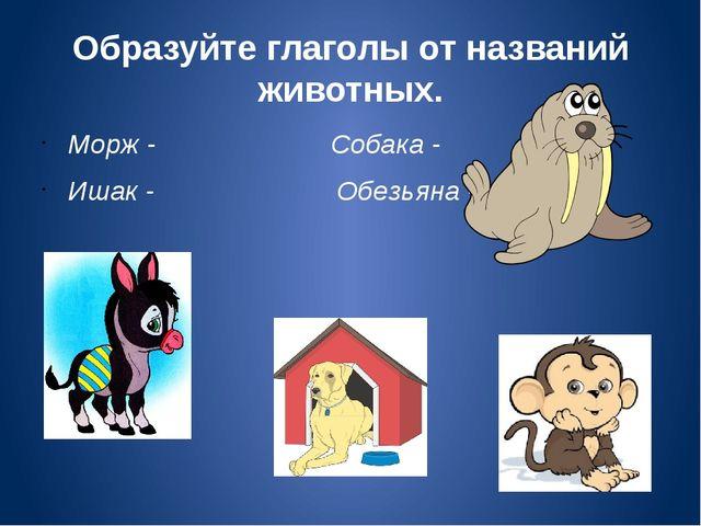 Образуйте глаголы от названий животных. Морж - Собака - Ишак - Обезьяна -