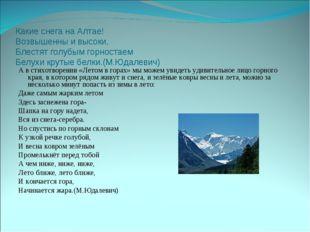 Какие снега на Алтае! Возвышенны и высоки, Блестят голубым горностаем Белухи