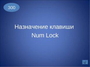 Назначение клавиши Num Lock 300