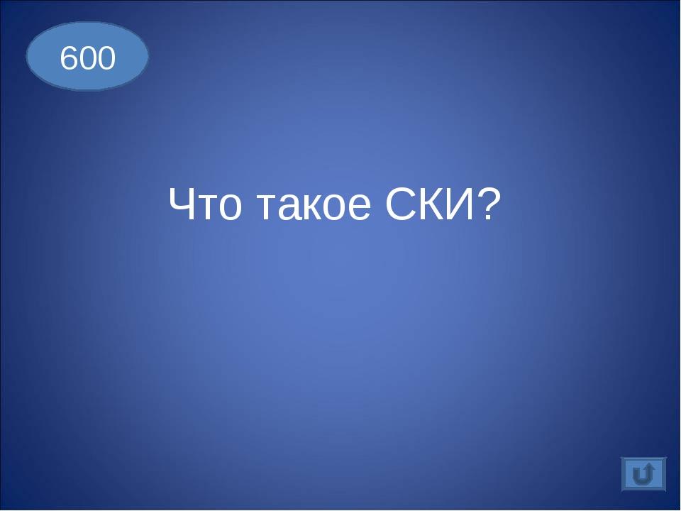 Что такое СКИ? 600