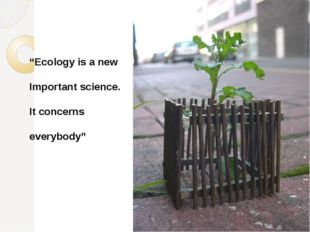 """Ecology is a new Important science. It concerns everybody"""