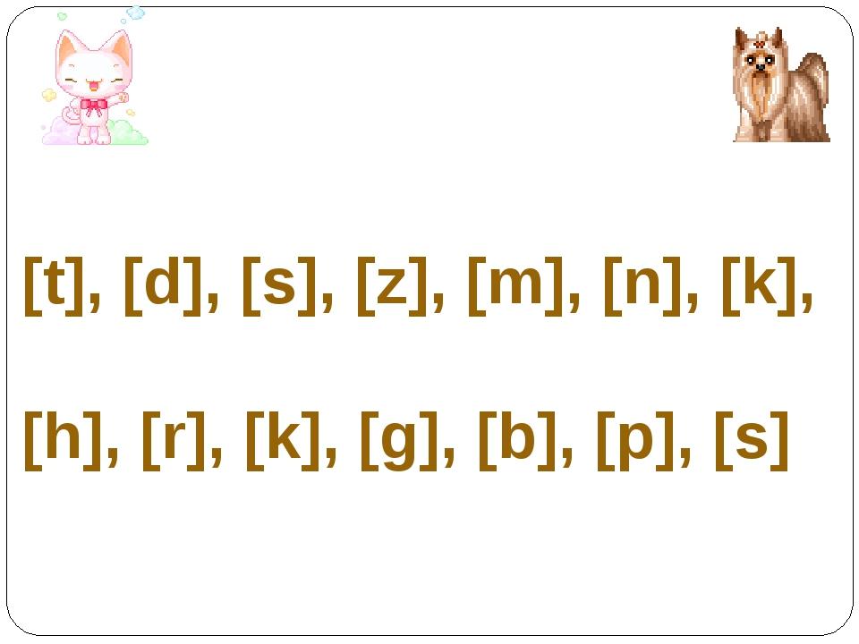[t], [d], [s], [z], [m], [n], [k], [h], [r], [k], [g], [b], [p], [s]