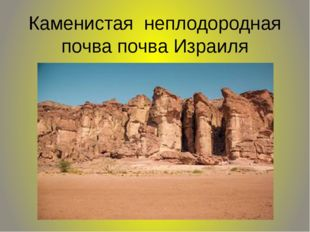 Каменистая неплодородная почва почва Израиля