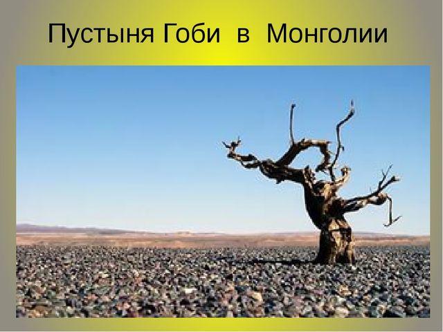 Пустыня Гоби в Монголии