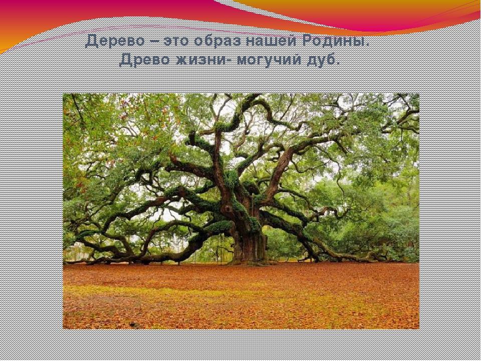 Дерево – это образ нашей Родины. Древо жизни- могучий дуб.