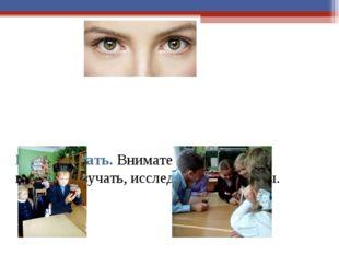 Понаблюдать. Внимательно следить глазами, изучать, исследовать предметы.