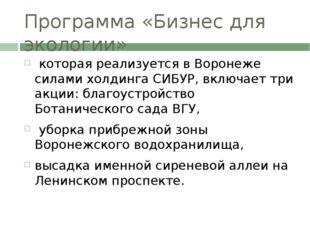 Программа «Бизнес для экологии» которая реализуется в Воронеже силами холдинг