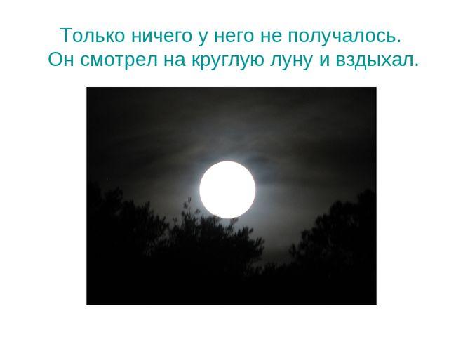 Только ничего у него не получалось. Он смотрел на круглую луну и вздыхал.