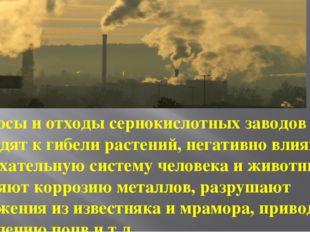 Выбросы и отходы сернокислотных заводов приводят к гибели растений, негативно