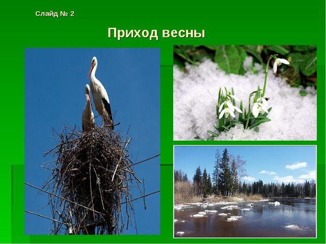 Слайд № 2 Приход весны