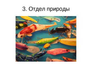 3. Отдел природы