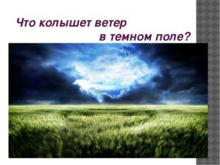 Что колышет ветер в темном поле?