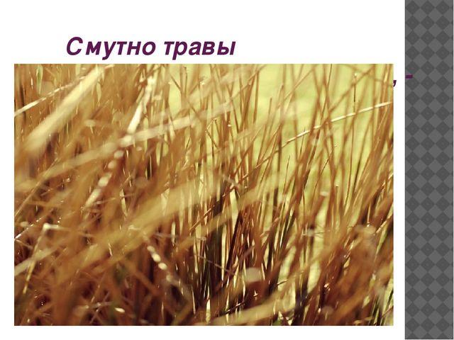 Смутно травы шепчутся сухие, -