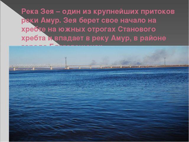 Река Зея – один из крупнейших притоков реки Амур. Зея берет свое начало на хр...