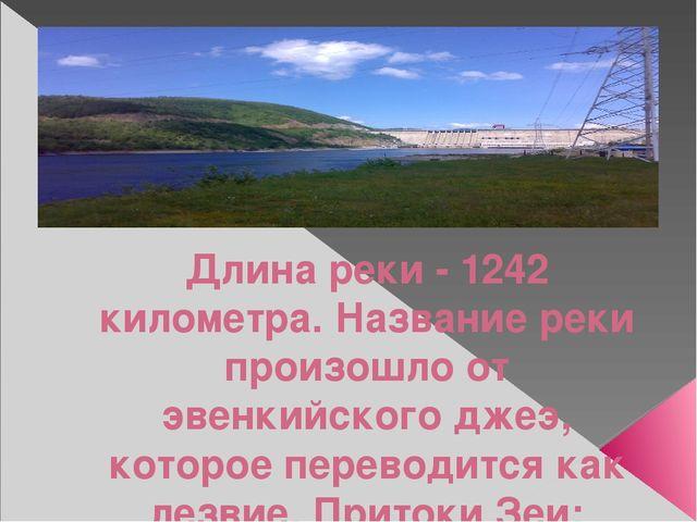 Длина реки - 1242 километра. Название реки произошло от эвенкийского джеэ, к...