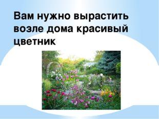 Вам нужно вырастить возле дома красивый цветник