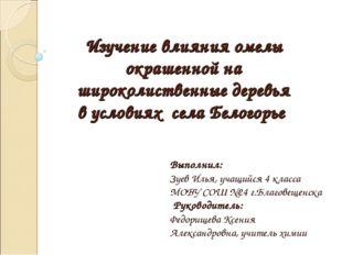 Выполнил: Зуев Илья, учащийся 4 класса МОБУ СОШ №24 г.Благовещенска Руководи
