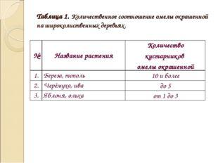 Таблица 1. Количественное соотношение омелы окрашенной на широколиственных де