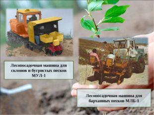 Лесопосадочная машина для склонов и бугристых песков МУЛ-1 Лесопосадочная маш