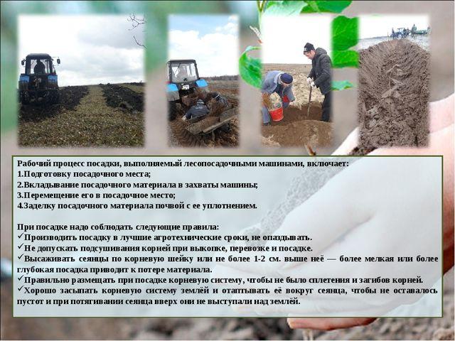 Рабочий процесс посадки, выполняемый лесопосадочными машинами, включает: Подг...
