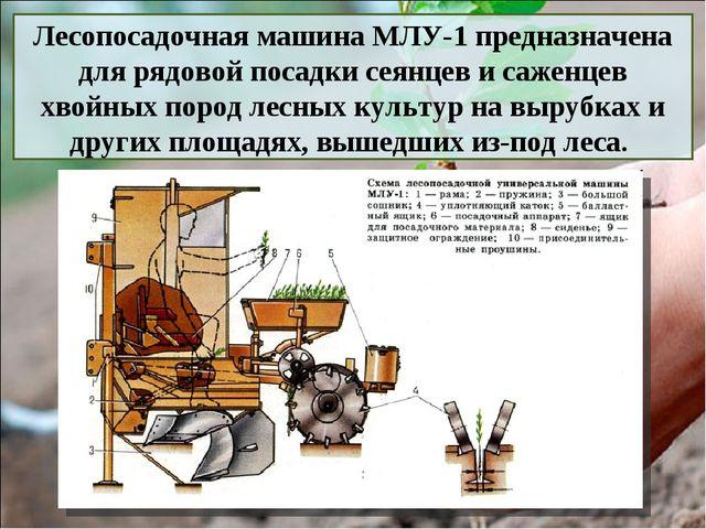 Лесопосадочная машина МЛУ-1 предназначена для рядовой посадки сеянцев и саже...