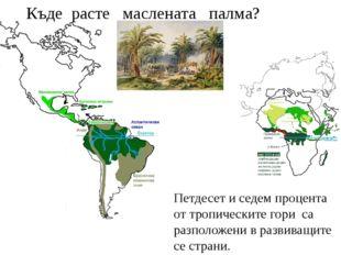 Петдесет и седем процента от тропическите гори са разположени в развиващите