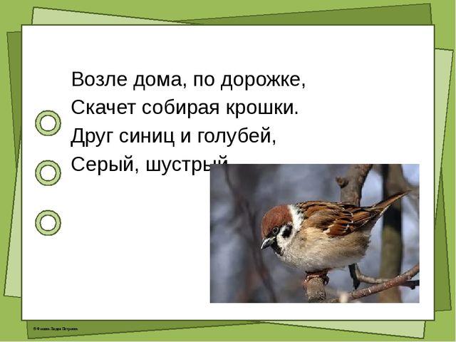 Возле дома, по дорожке, Скачет собирая крошки. Друг синиц и голубей, Серый,...