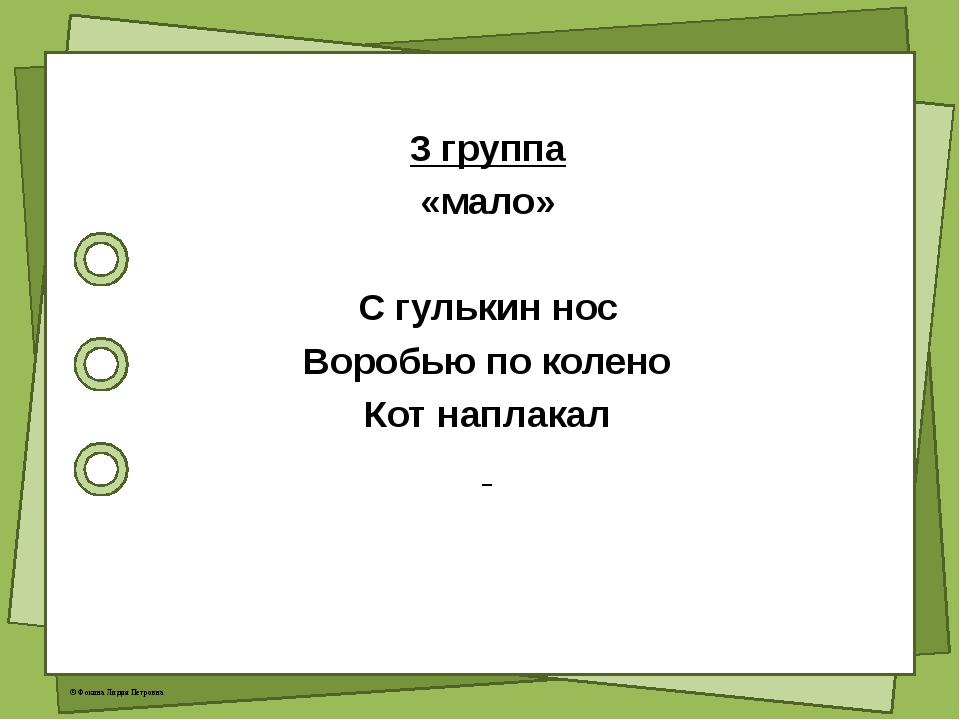 3 группа «мало» С гулькин нос Воробью по колено Кот наплакал © Фокина Лидия...