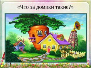«Что за домики такие?»